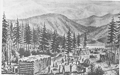 Drawing of cabins