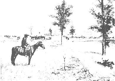 Drawing of rider on horse next to elm tree